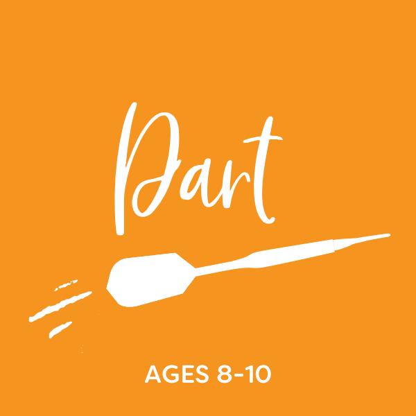Dart Sample
